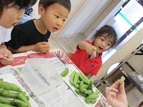 食育(野菜を知ろう!)